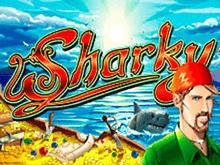 Новые игровые автоматы Sharky без СМС