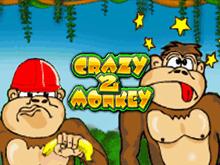 Crazy Monkey 2 - игровые автоматы