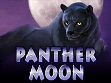Автоматы Panther Moon онлайн