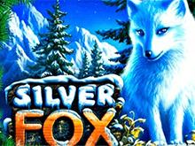 Автоматы Silver Fox в казино